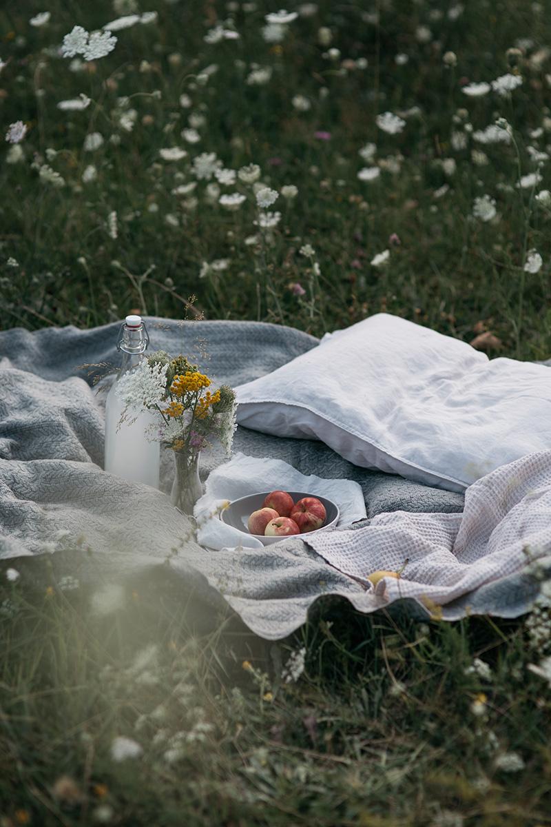 nordic piknik v trave