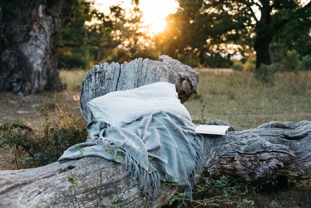 v prírode s knihou
